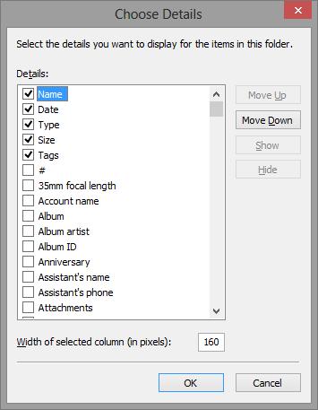 choose-details-file-explorer-windows-8