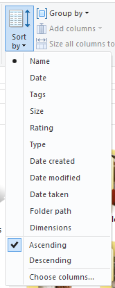 section-view-file-explorer